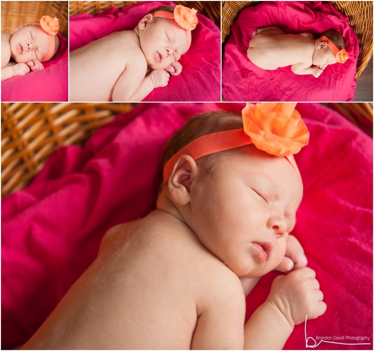 Newborn Photography Ontario